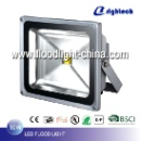 LED Flood Light  (China)